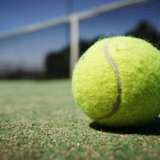 Pro Tennis Tips Review