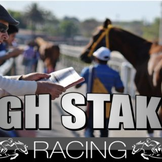 High Stakes Racing Review