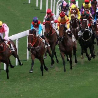 Value Racing Tips Review