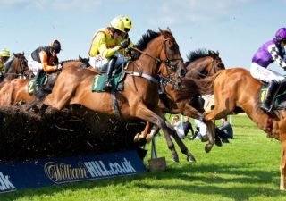 Thoroughbred Betting Review