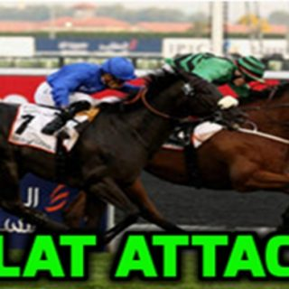 Flat Attack Review