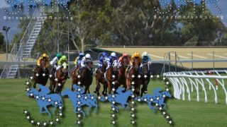 Select Horse Racing Review