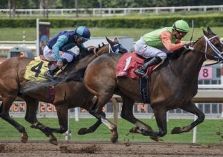 JB Horse Racing Tips Review