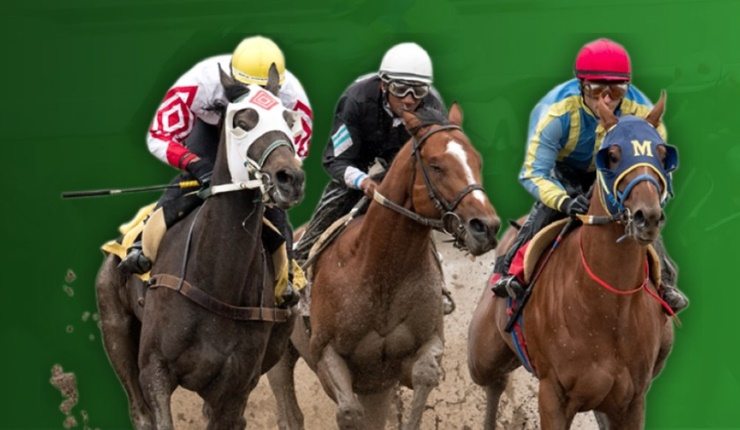 Racing Odds Review